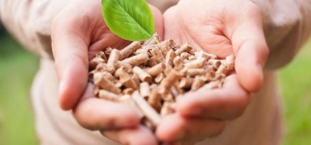 Пеллеты – экологичное и доступное по цене решение